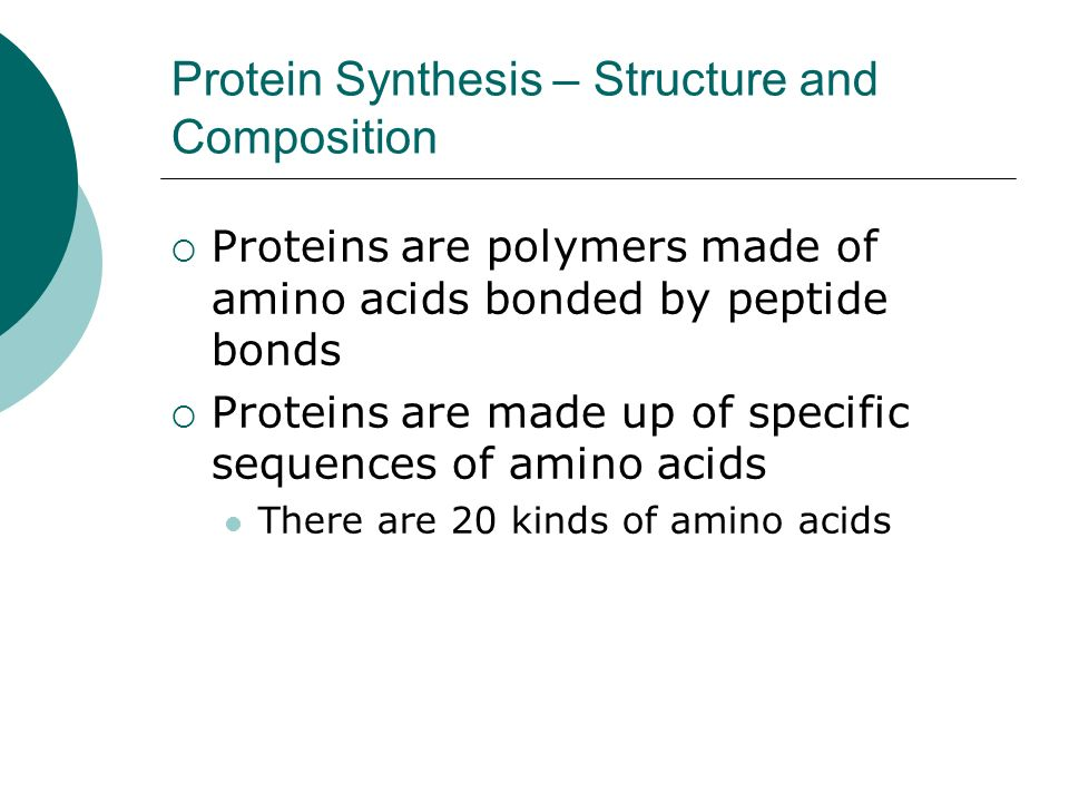 Protein Synthesis – Structure and Composition Proteins are polymers made of amino acids bonded by peptide bonds Proteins are made up of specific sequences of amino acids There are 20 kinds of amino acids