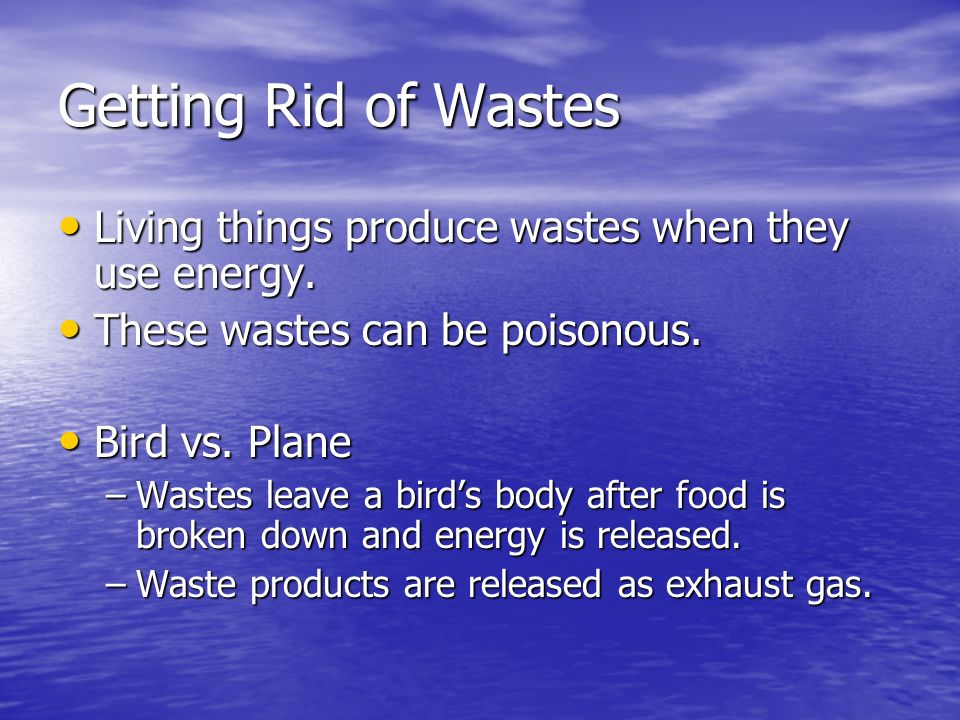 Getting Rid of Wastes Living things produce wastes when they use energy. Living things produce wastes when they use energy. These wastes can be poison