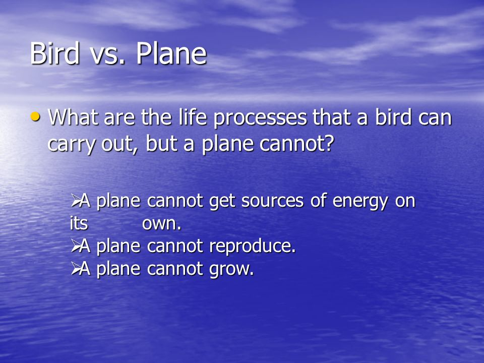 Bird vs. Plane What are the life processes that a bird can carry out, but a plane cannot? What are the life processes that a bird can carry out, but a