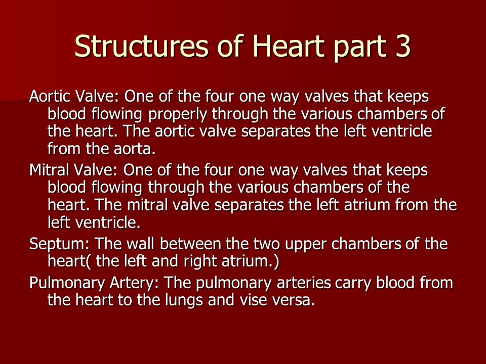 Structures of Heart part 3 Aortic Valve: One of the four one way valves that keeps blood flowing properly through the various chambers of the heart. T