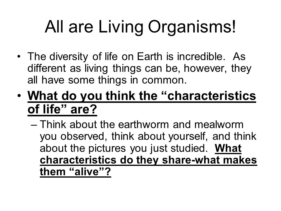 All are Living Organisms! The diversity of life on Earth is incredible. As different as living things can be, however, they all have some things in co