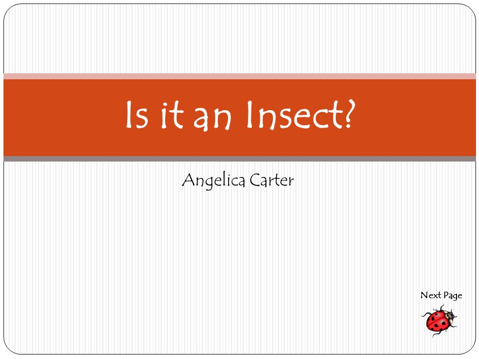 Angelica Carter Is it an Insect? Next Page