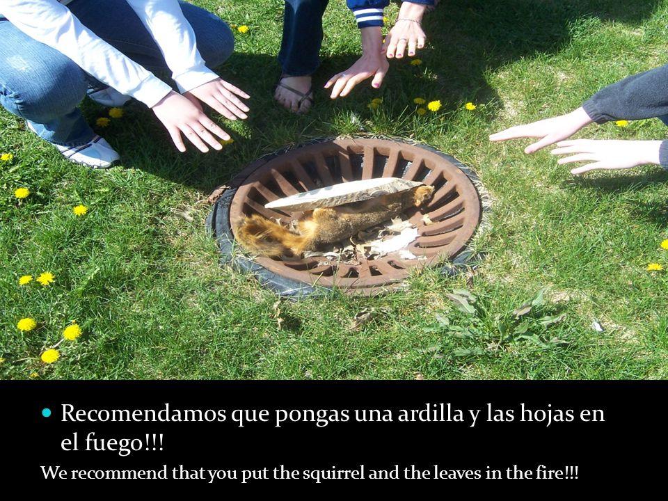Recomendamos que pongas una ardilla y las hojas en el fuego!!! We recommend that you put the squirrel and the leaves in the fire!!!