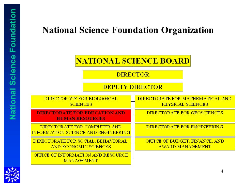 National Science Foundation 4 National Science Foundation Organization