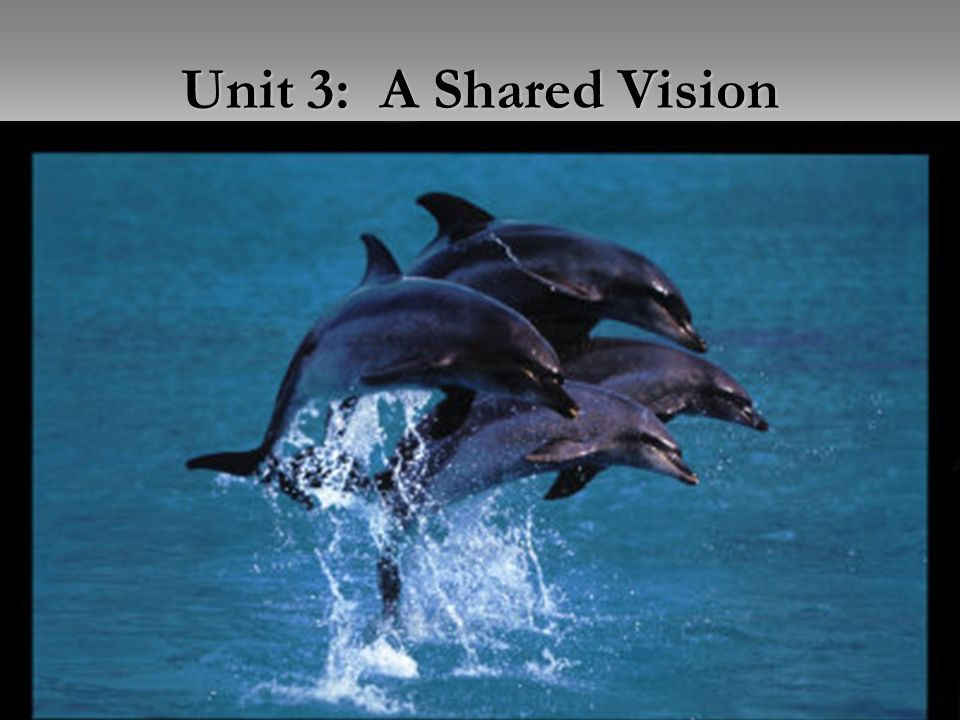 Unit 2: Measuring Leadership (Aitken) Unit 3: A Shared Vision