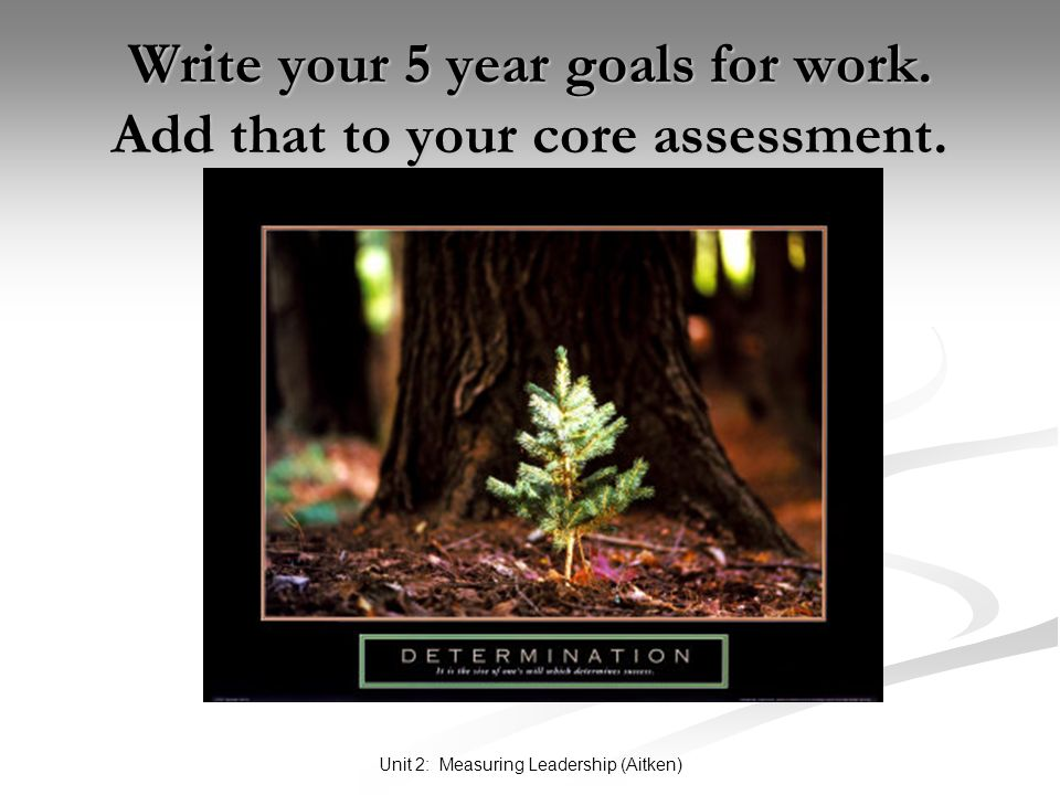 Unit 2: Measuring Leadership (Aitken) Write your 5 year goals for work. Add that to your core assessment.