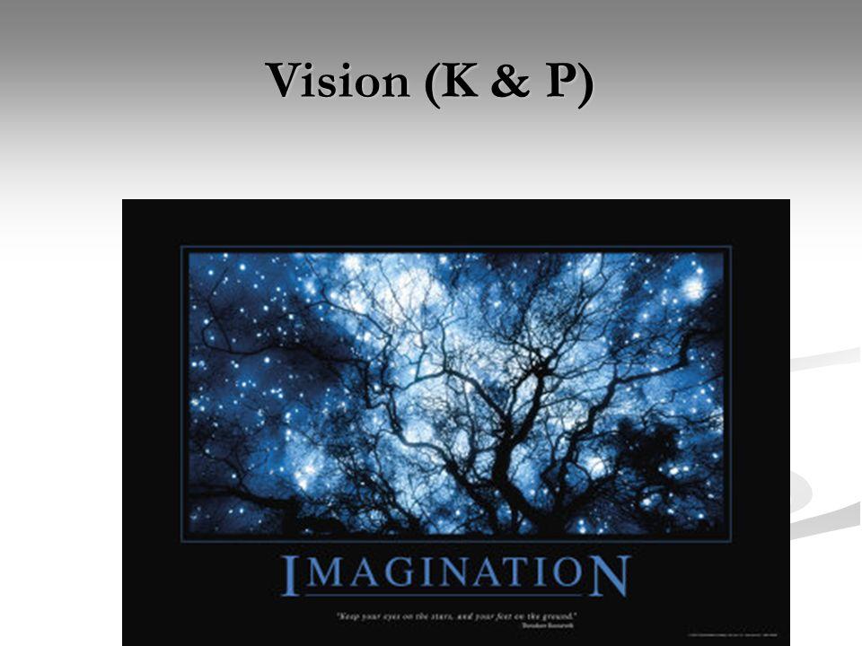 Unit 2: Measuring Leadership (Aitken) Vision (K & P)