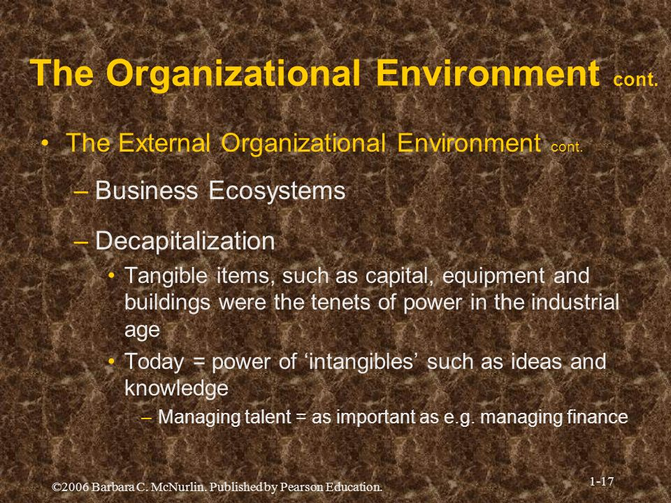 ©2006 Barbara C. McNurlin. Published by Pearson Education. 1-17 The Organizational Environment cont. The External Organizational Environment cont. –Bu