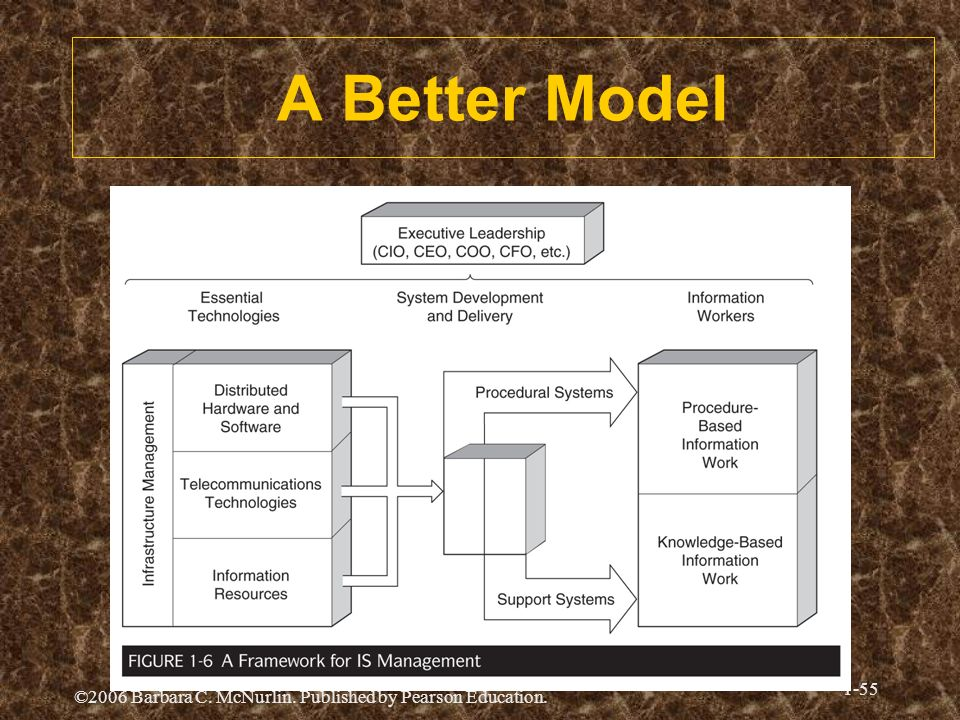 ©2006 Barbara C. McNurlin. Published by Pearson Education. 1-55 A Better Model