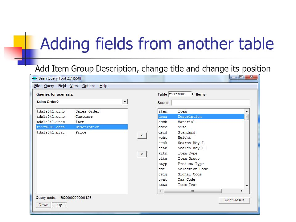 Adding fields from another table Add Item Group Description, change title and change its position