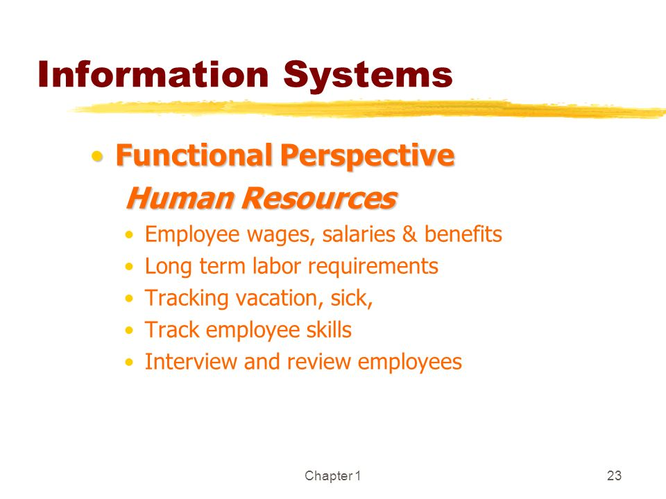 Chapter 123 Information Systems Functional PerspectiveFunctional Perspective Human Resources Employee wages, salaries & benefits Long term labor requi