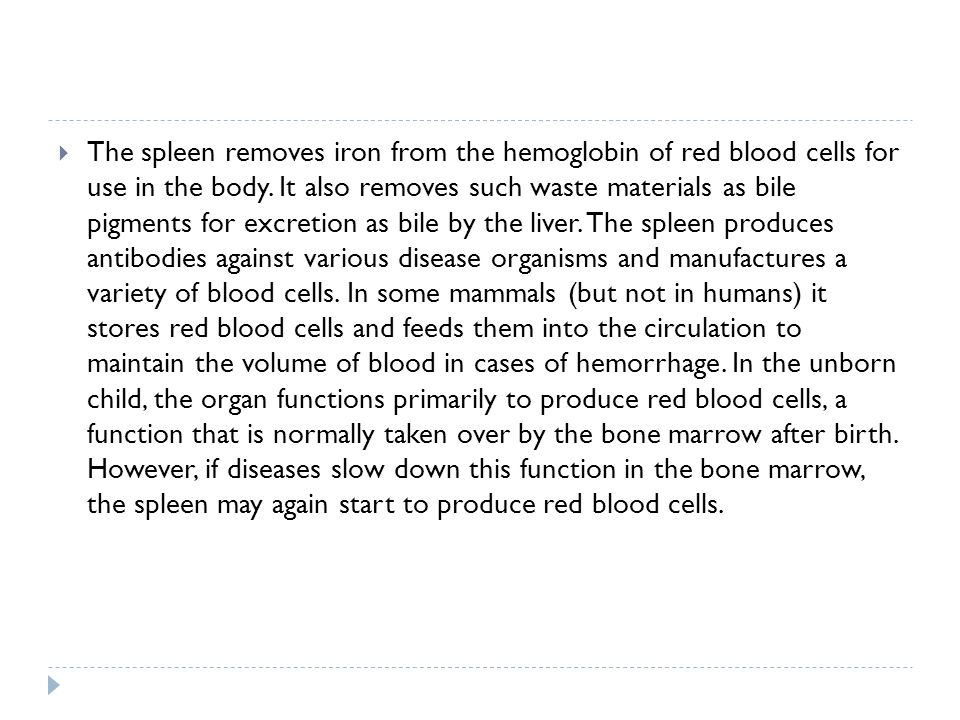 The spleen removes iron from the hemoglobin of red blood cells for use in the body. It also removes such waste materials as bile pigments for excretio