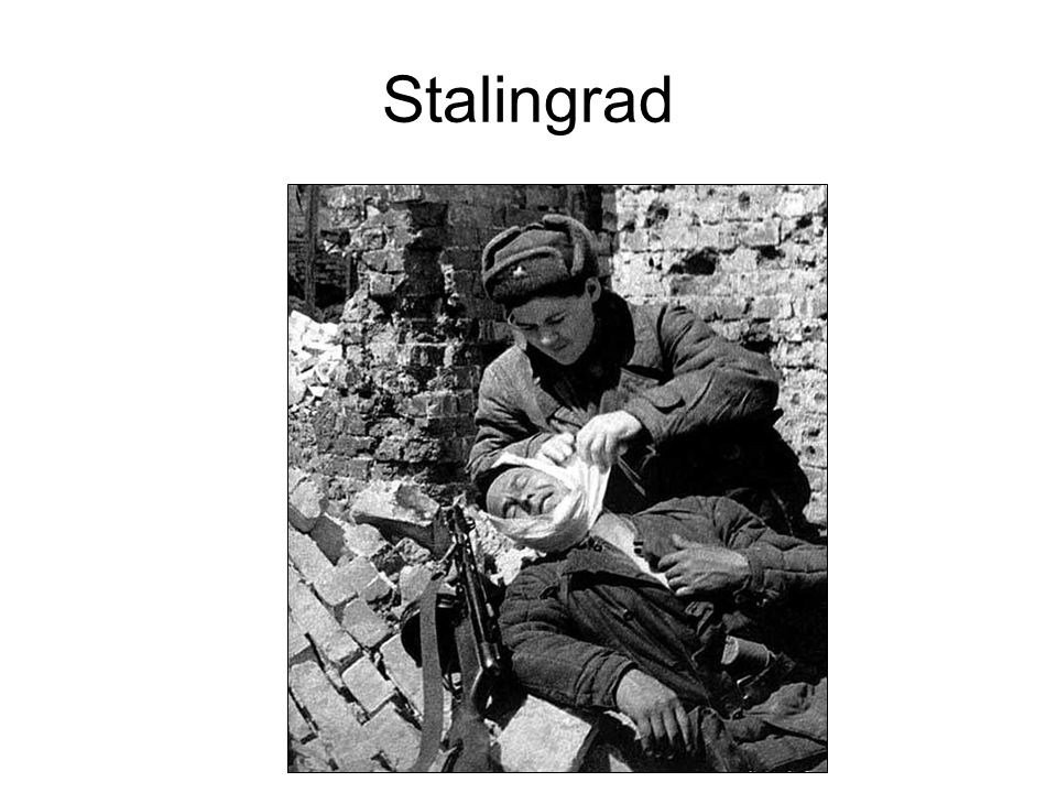 Stalingrad On Aug 24 the Germans attacked Stalingrads suburbs and began fighting their way into the city Hitler began shifting forces from the Caucasu