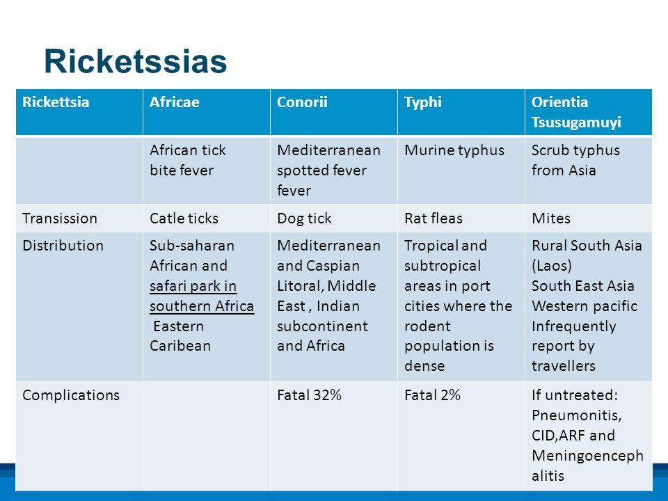 Ricketssias RickettsiaAfricaeConoriiTyphiOrientia Tsusugamuyi African tick bite fever Mediterranean spotted fever fever Murine typhusScrub typhus from