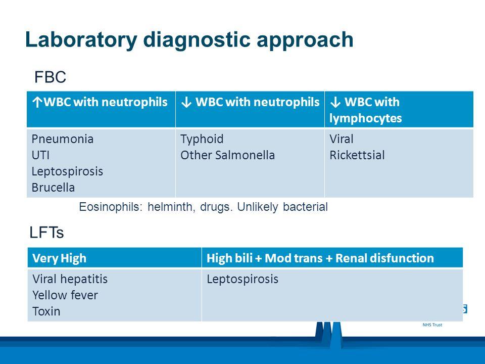Haemorrhag ic Manifestatio ns Platelets < 100 Dengue Haemorrhai c Fever (DHF) 10-20% Mortality Plasma leak > 20% in pack cells volumen Protein Clinical effusions