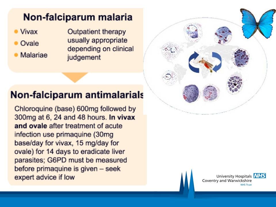 Investigations and treatment LFT: mild transaminitis FBC: pancytopenia Bone marrow: gold standard BCM: sensitivity 15-70% (prolong cultures up to 4 weeks) Note: Q Fever, rarer, similar from same area Serology is key diagnosis!.