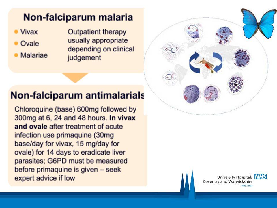Falciparum Malaria or mixed infection