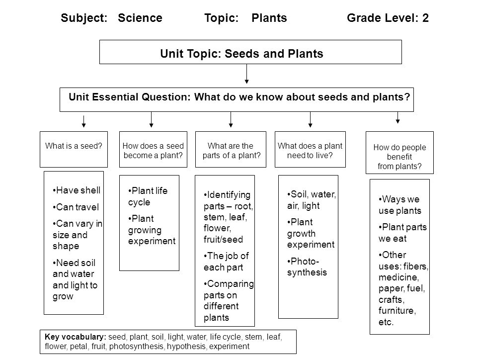 Content Map: Third Grade – Earth Science - Rocks and Soil Key Learning(s): Understand what the earth is made of and how rocks and soil play a major role in our lives.