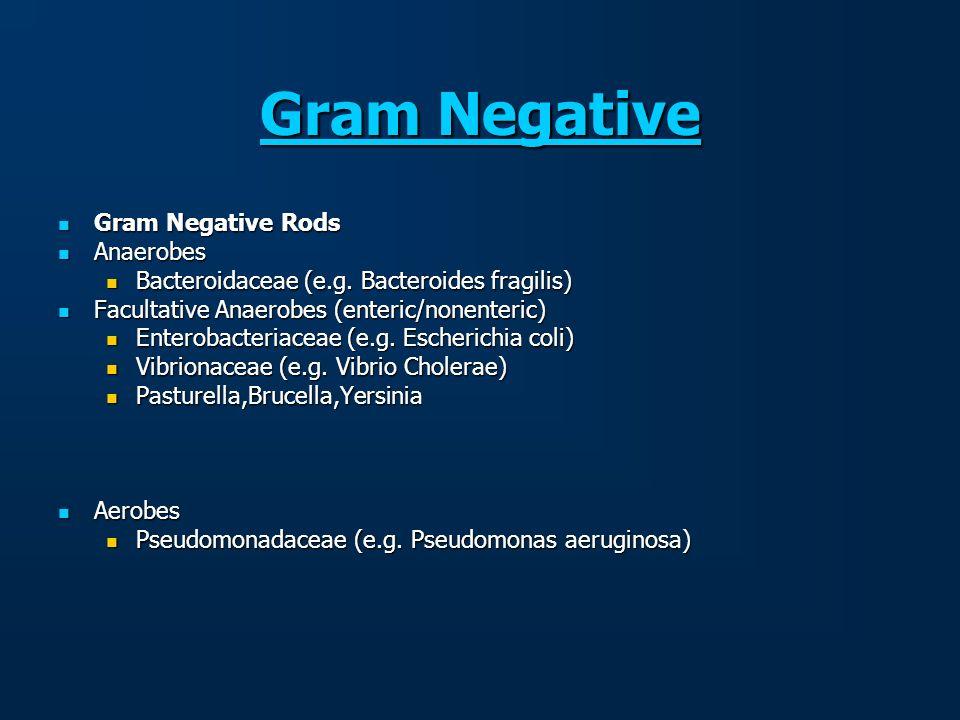 Gram Negative Gram Negative Gram Negative Rods Gram Negative Rods Anaerobes Anaerobes Bacteroidaceae (e.g. Bacteroides fragilis) Bacteroidaceae (e.g.