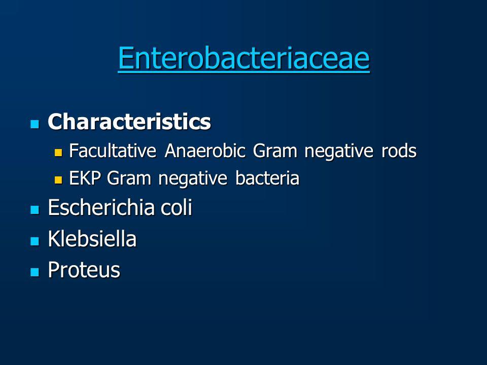 Enterobacteriaceae Characteristics Characteristics Facultative Anaerobic Gram negative rods Facultative Anaerobic Gram negative rods EKP Gram negative