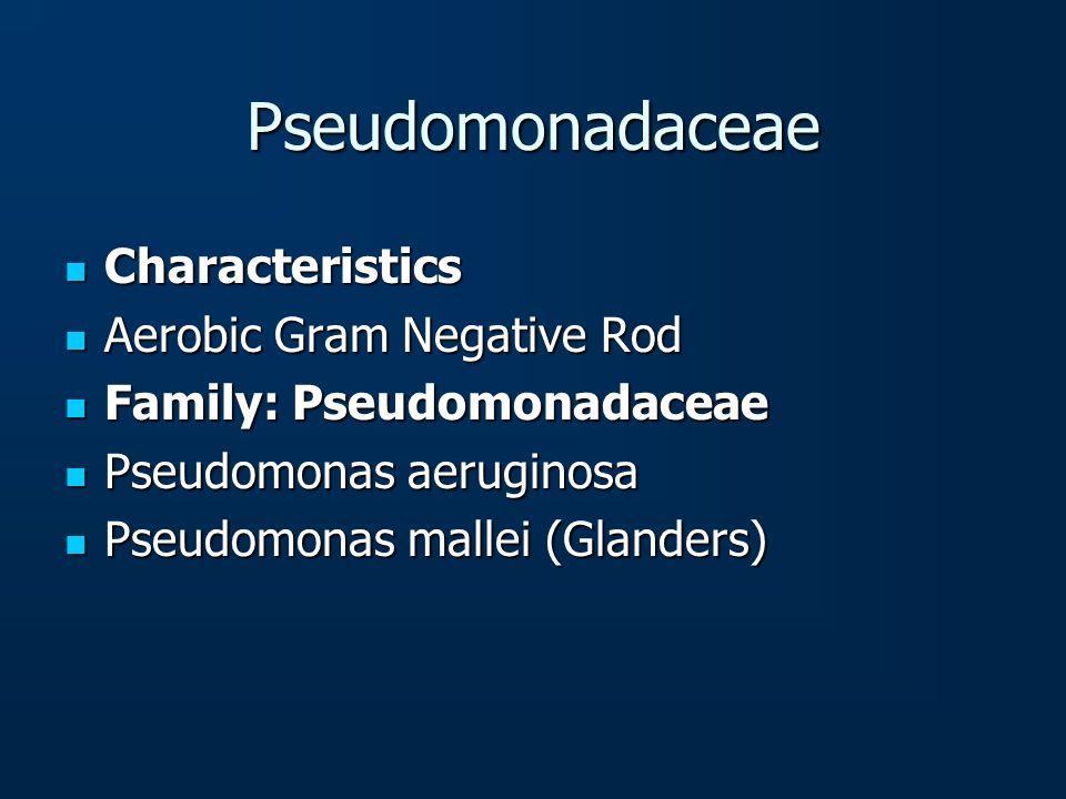 Pseudomonadaceae Characteristics Characteristics Aerobic Gram Negative Rod Aerobic Gram Negative Rod Family: Pseudomonadaceae Family: Pseudomonadaceae