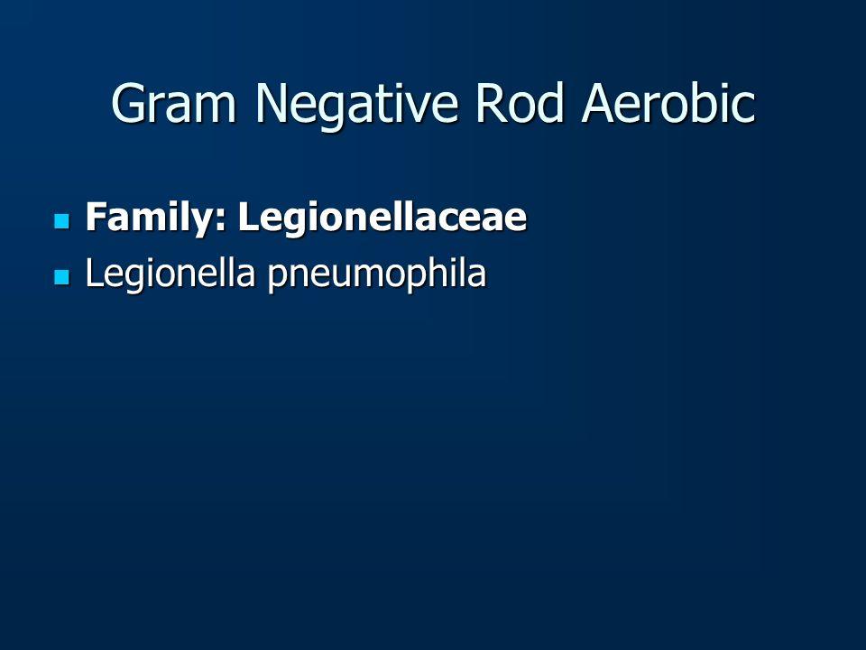 Gram Negative Rod Aerobic Family: Legionellaceae Family: Legionellaceae Legionella pneumophila Legionella pneumophila