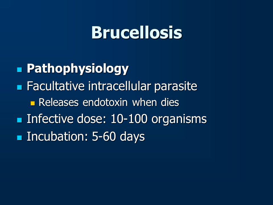 Brucellosis Pathophysiology Pathophysiology Facultative intracellular parasite Facultative intracellular parasite Releases endotoxin when dies Release