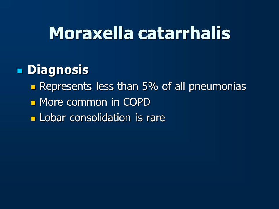Moraxella catarrhalis Diagnosis Diagnosis Represents less than 5% of all pneumonias Represents less than 5% of all pneumonias More common in COPD More
