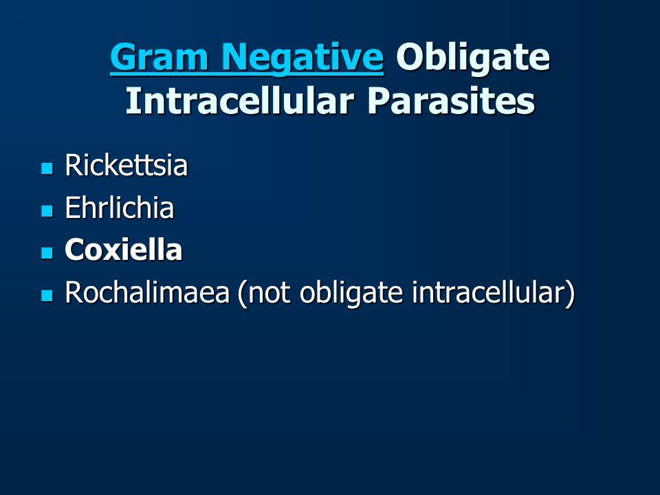 Gram NegativeGram Negative Obligate Intracellular Parasites Gram Negative Rickettsia Rickettsia Ehrlichia Ehrlichia Coxiella Coxiella Rochalimaea (not