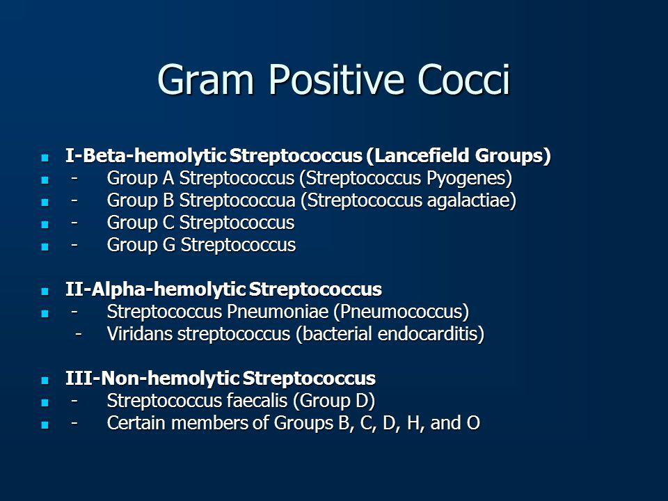 Gram Positive Cocci I-Beta-hemolytic Streptococcus (Lancefield Groups) I-Beta-hemolytic Streptococcus (Lancefield Groups) -Group A Streptococcus (Stre