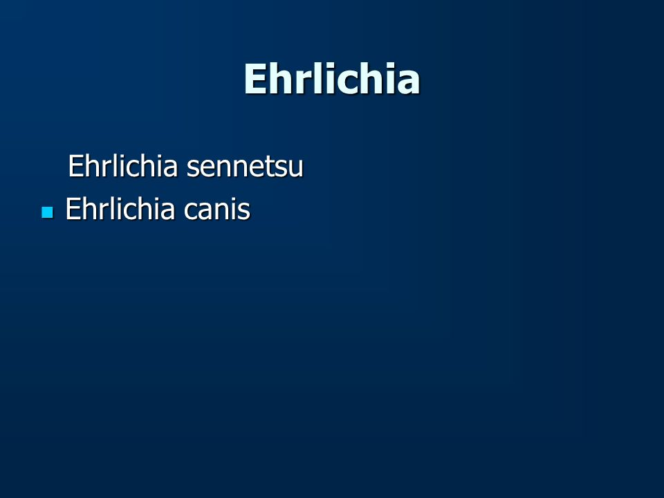 Ehrlichia Ehrlichia sennetsu Ehrlichia sennetsu Ehrlichia canis Ehrlichia canis