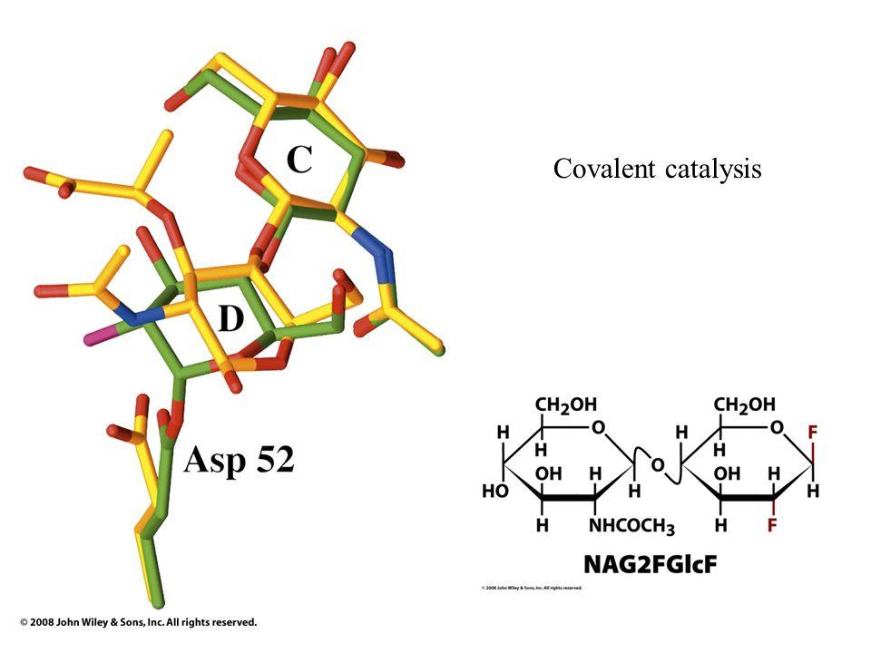 Covalent catalysis