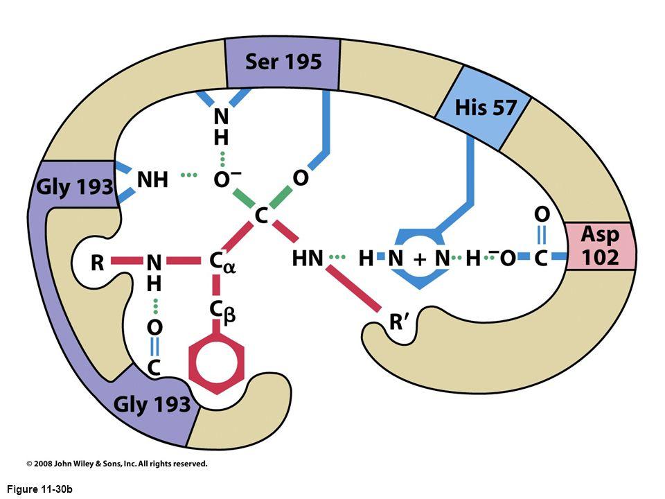 Figure 11-30b