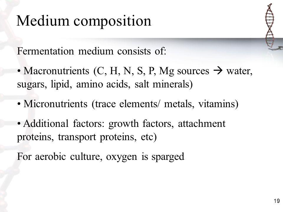 19 Medium composition Fermentation medium consists of: Macronutrients (C, H, N, S, P, Mg sources water, sugars, lipid, amino acids, salt minerals) Mic