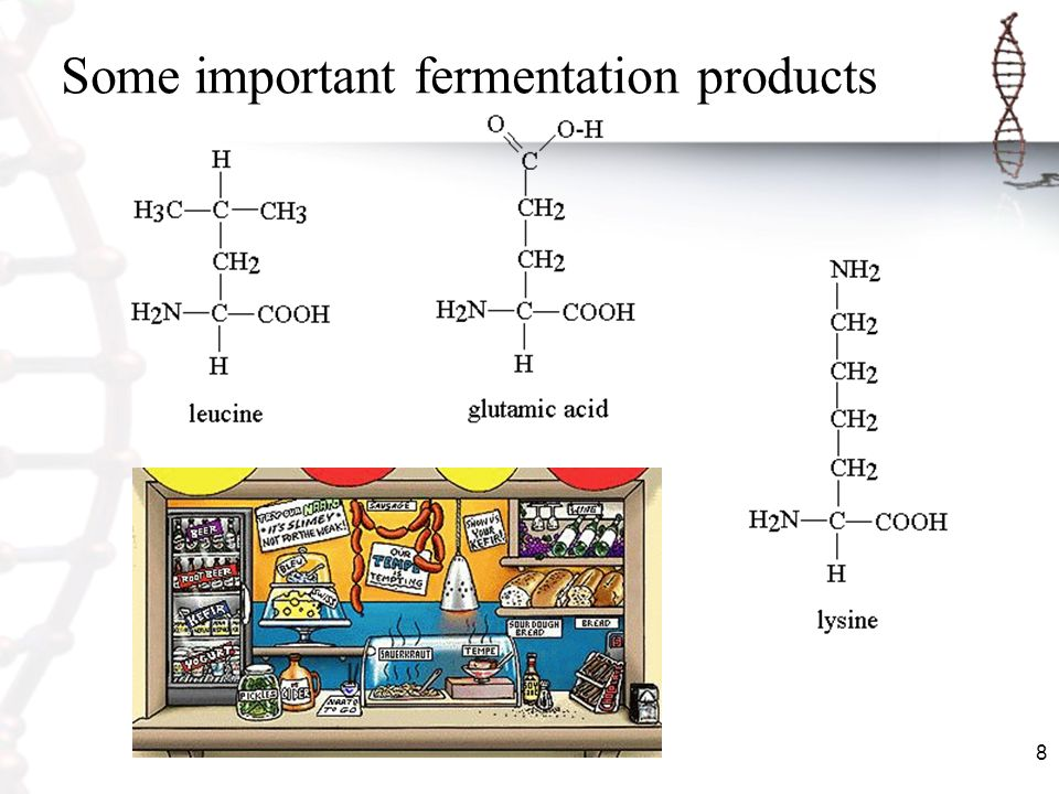 8 Some important fermentation products