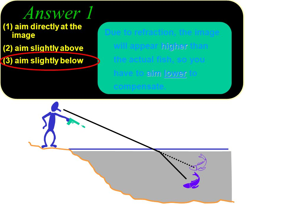 Answer 1 higher aimlower Due to refraction, the image will appear higher than the actual fish, so you have to aim lower to compensate. (1) aim directl