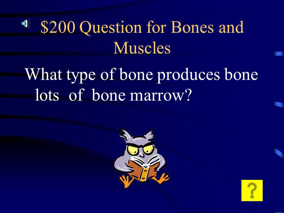$100 Answer for Bones and Muscles Ligaments