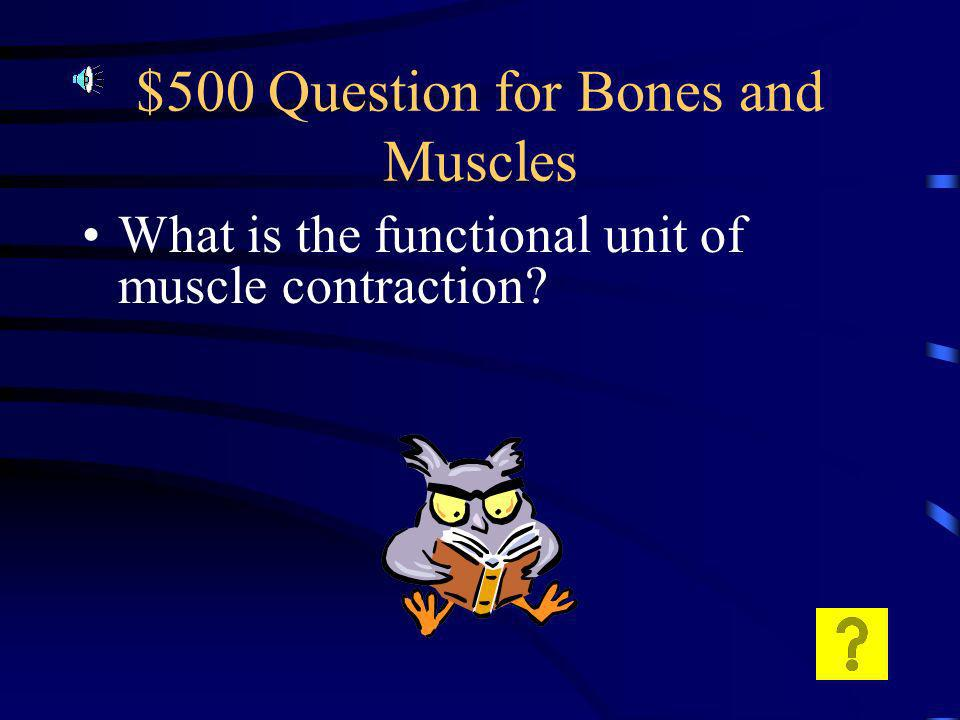 $400 Answer for Bones and Muscles A shoulder is an example of a ball and socket joint A knee is an example of a hinge joint.
