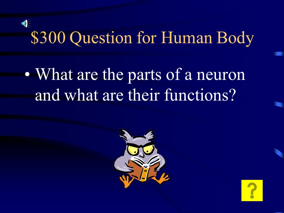 $200 Answer for Human Body Nervous and endocrine