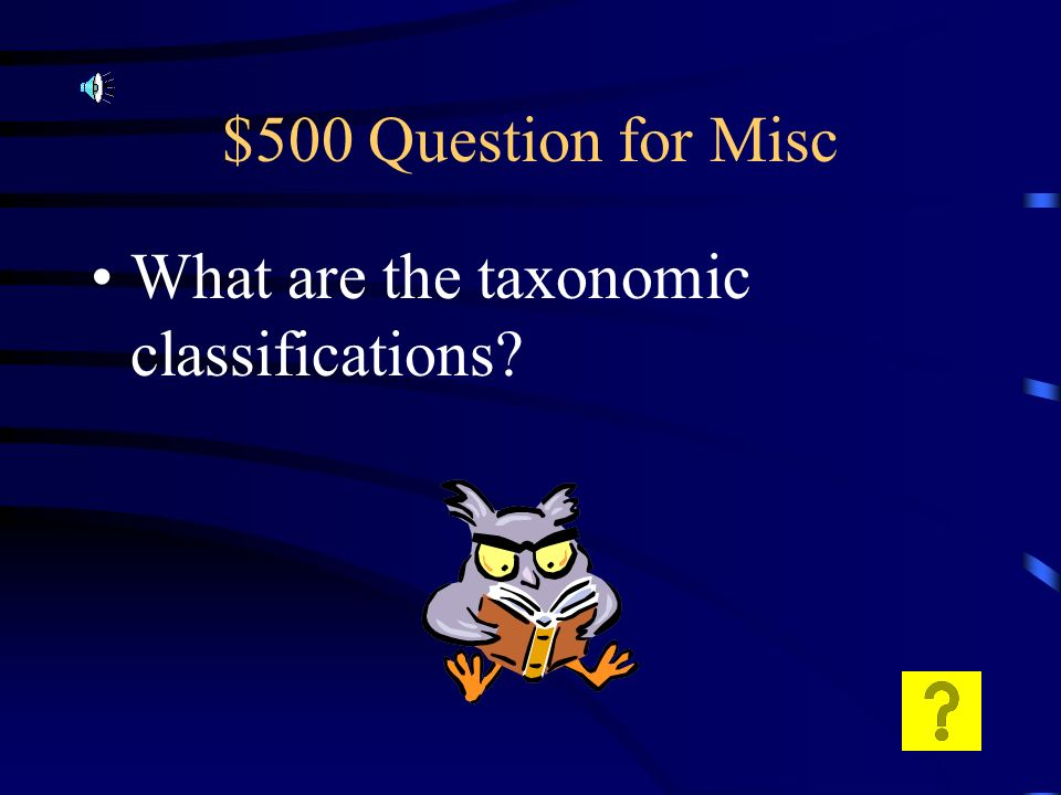 $400 Answer for Misc Leaf – photosynthesis Stem transport of sugar and water Root - absorb