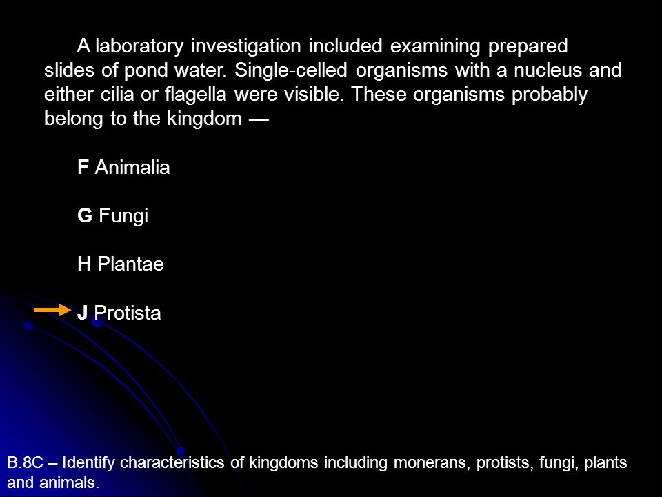 A laboratory investigation included examining prepared slides of pond water. Single-celled organisms with a nucleus and either cilia or flagella were