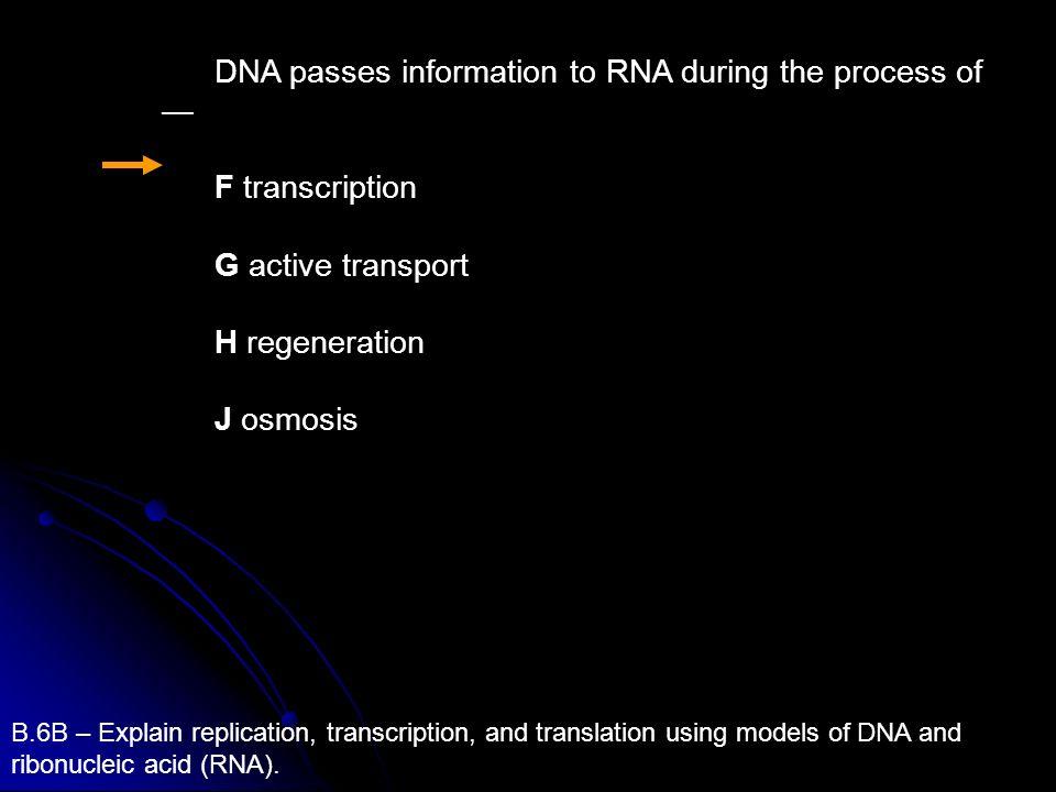 DNA passes information to RNA during the process of F transcription G active transport H regeneration J osmosis B.6B – Explain replication, transcript