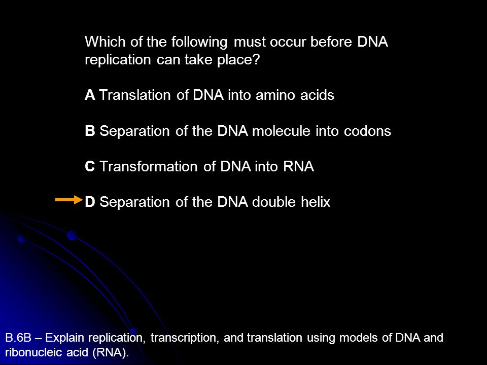 Which of the following must occur before DNA replication can take place? A Translation of DNA into amino acids B Separation of the DNA molecule into c