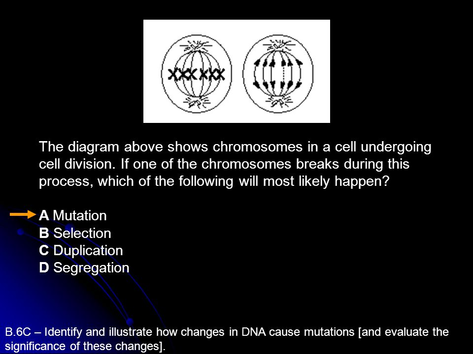 B.6C – Identify and illustrate how changes in DNA cause mutations [and evaluate the significance of these changes]. The diagram above shows chromosome