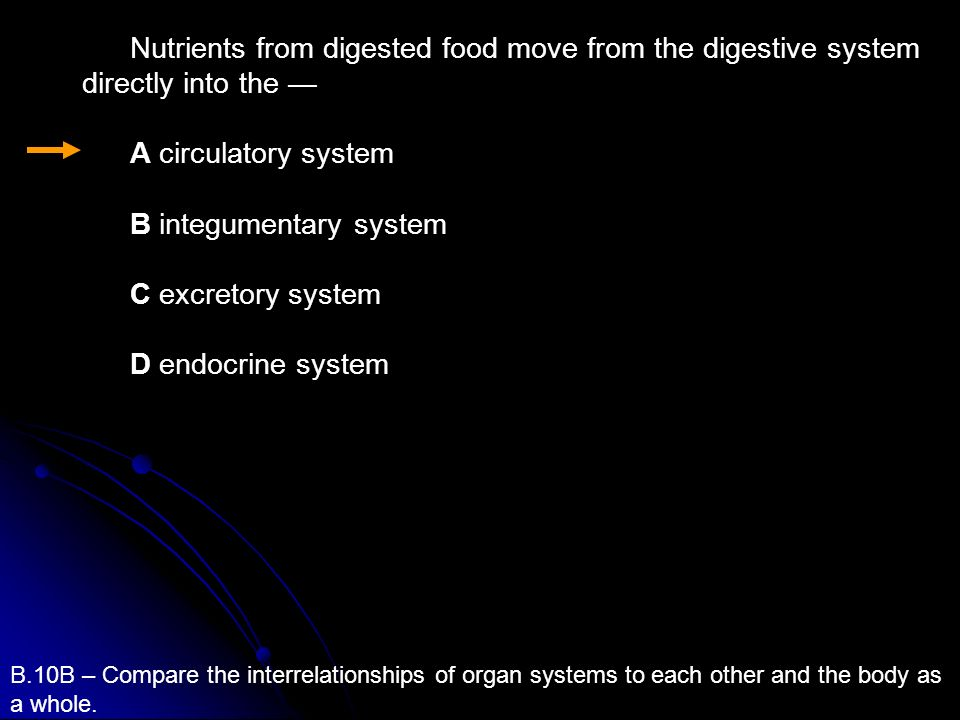 B.10B – Compare the interrelationships of organ systems to each other and the body as a whole. Nutrients from digested food move from the digestive sy