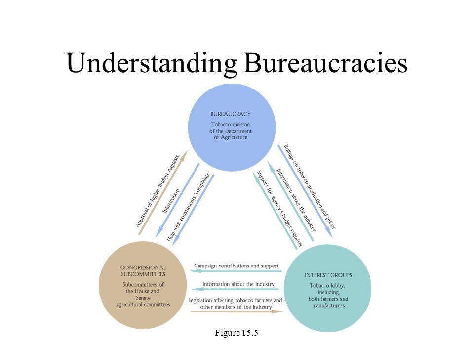 Figure 15.5 Understanding Bureaucracies