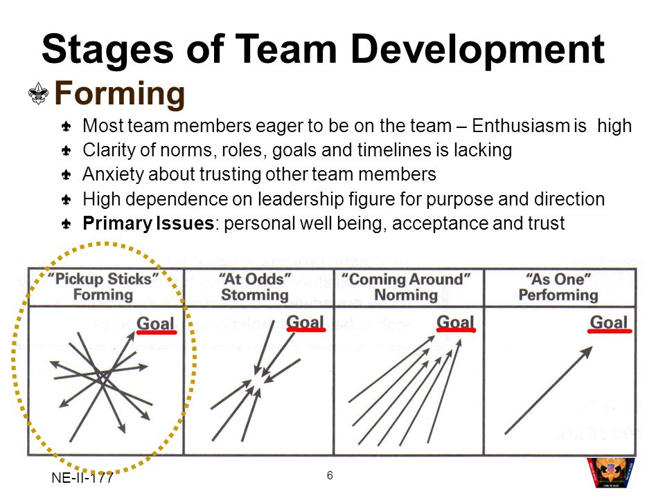 NE-II-177 6 Stages of Team Development Forming Most team members eager to be on the team – Enthusiasm is high Clarity of norms, roles, goals and timel