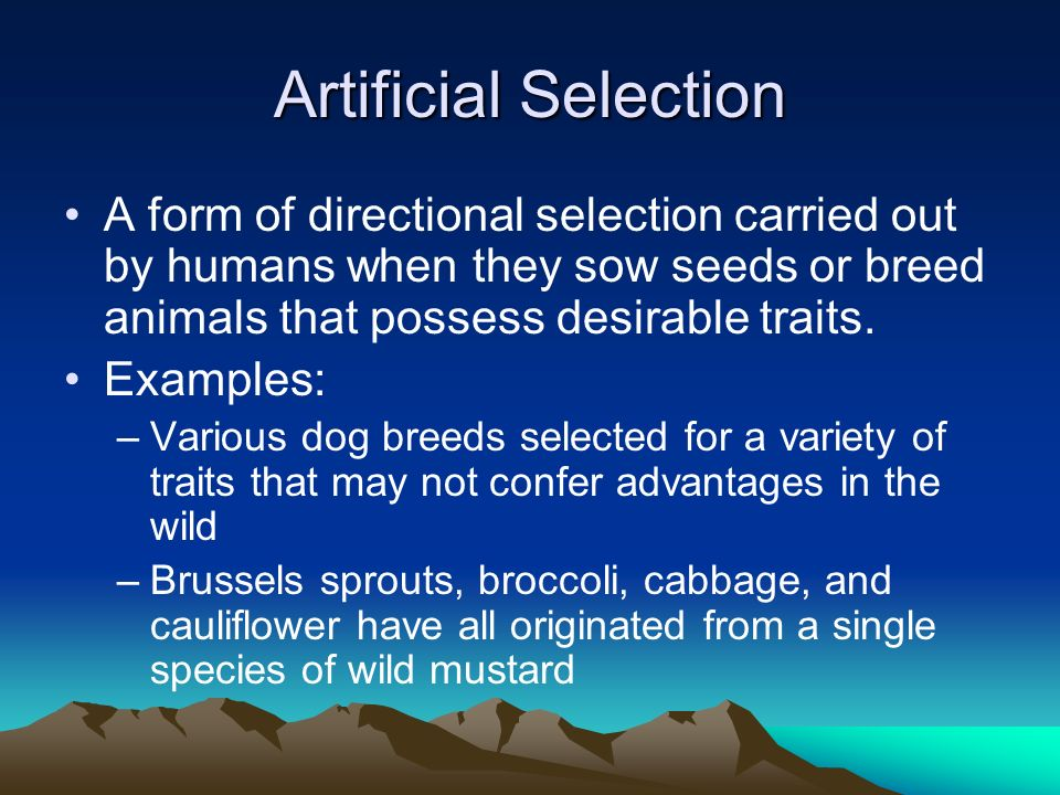 Artificial Selection A form of directional selection carried out by humans when they sow seeds or breed animals that possess desirable traits. Example