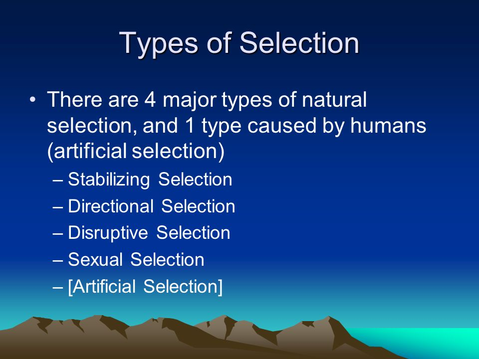Types of Selection There are 4 major types of natural selection, and 1 type caused by humans (artificial selection) –Stabilizing Selection –Directiona