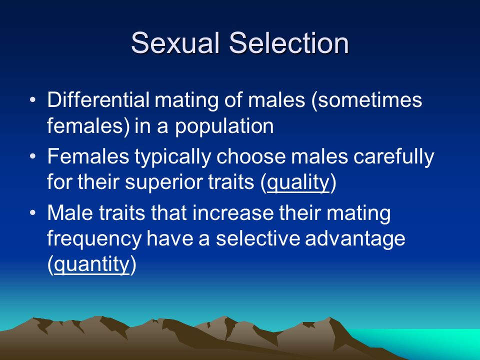 Sexual Selection Two types: Male Competition: leads to contests of strength that award mating opportunities to the strongest males –Evolution of antlers, horns, large stature, etc.